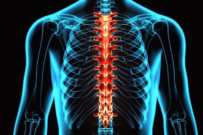 NII haigused liigeste Artroosi harjab kaed ravi kodus