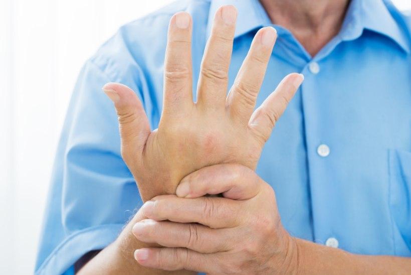 Lebedev liigeste ravi Jala jala poletik on