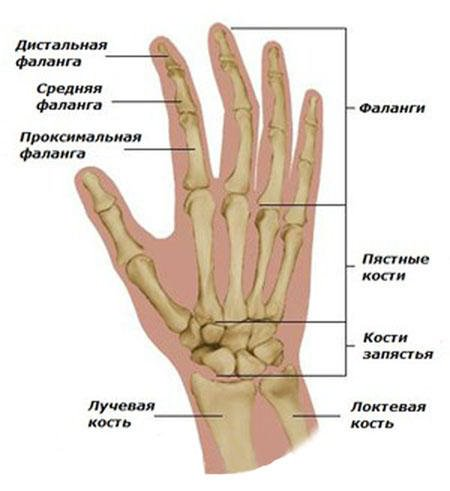 Vaikeste liigendite haigud sormed