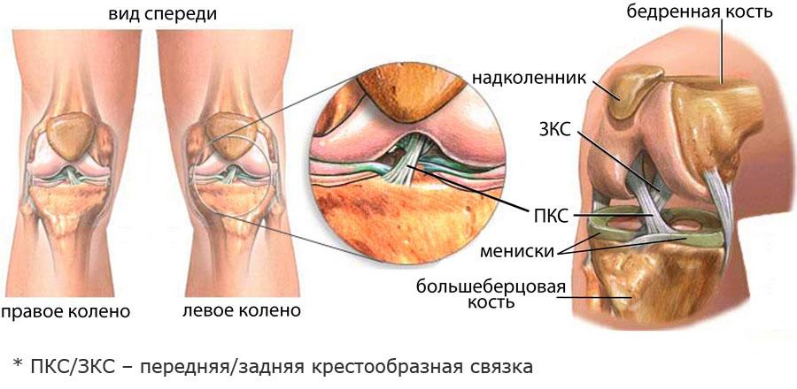Olaliigese valus ja klopsake