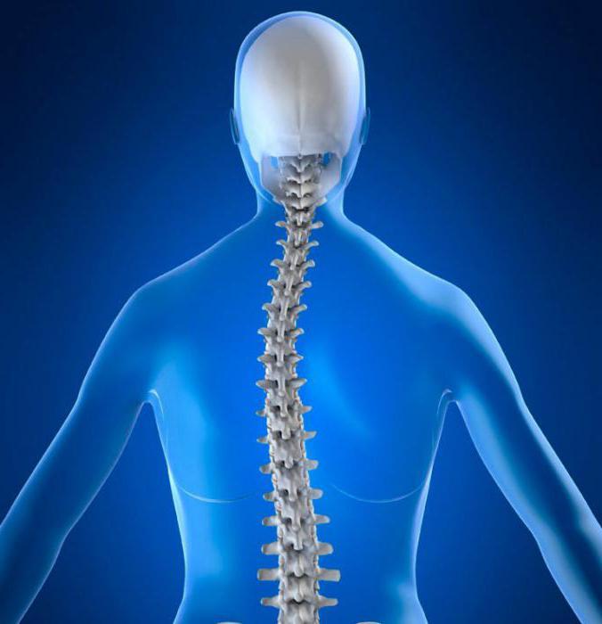 Artroosi peatusliidetes