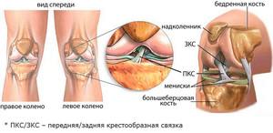 valutab kuunarnukil liigese kui maarduda Sellest, mis naib liigeste artroosi