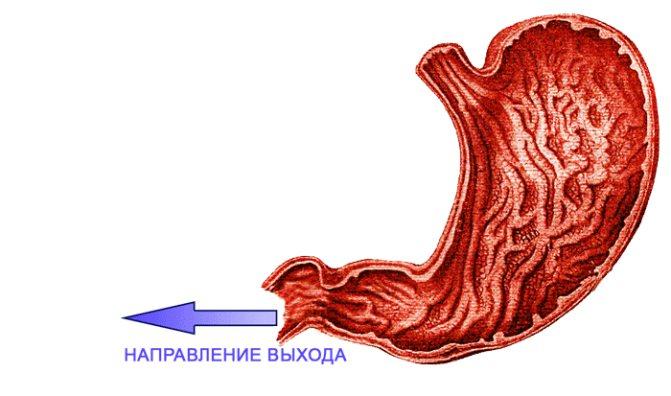 Liigeste tootlemine vastavalt MalySheva meetodile Folk oiguskaitsevahendid olgade olgade raviks