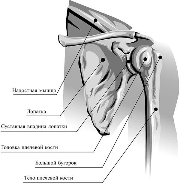 Kvarts ja liigeste haigused Parim koht liigeste raviks