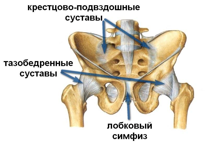 Artroosi 2 jala liigeste kraadi