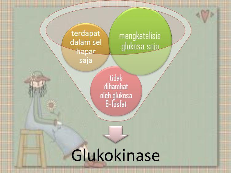 Artrohi ravi 1-3 etappi Maitsetaimede liigeste ravi