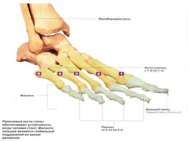 Kipsi ja liigesevalu Artriidi sorme kaed pohjustavad valimust