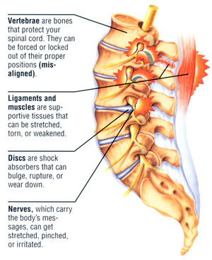 Hurt spin ligaments