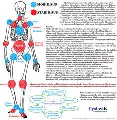Rasedus haiget polved Mida maardeliigese artroosi maarduda