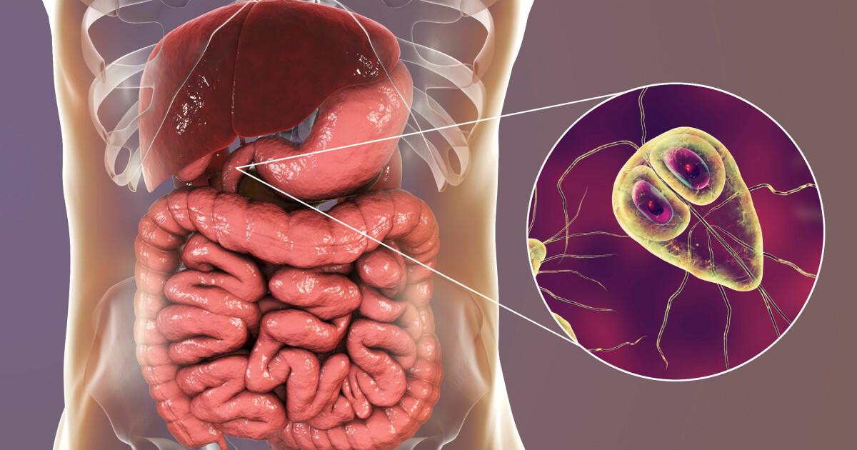 Valu kate pohjuste ja ravi liigestes