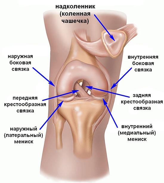 Kuidas eemaldada poletiku poletiku artroosis Jalg on haige polve