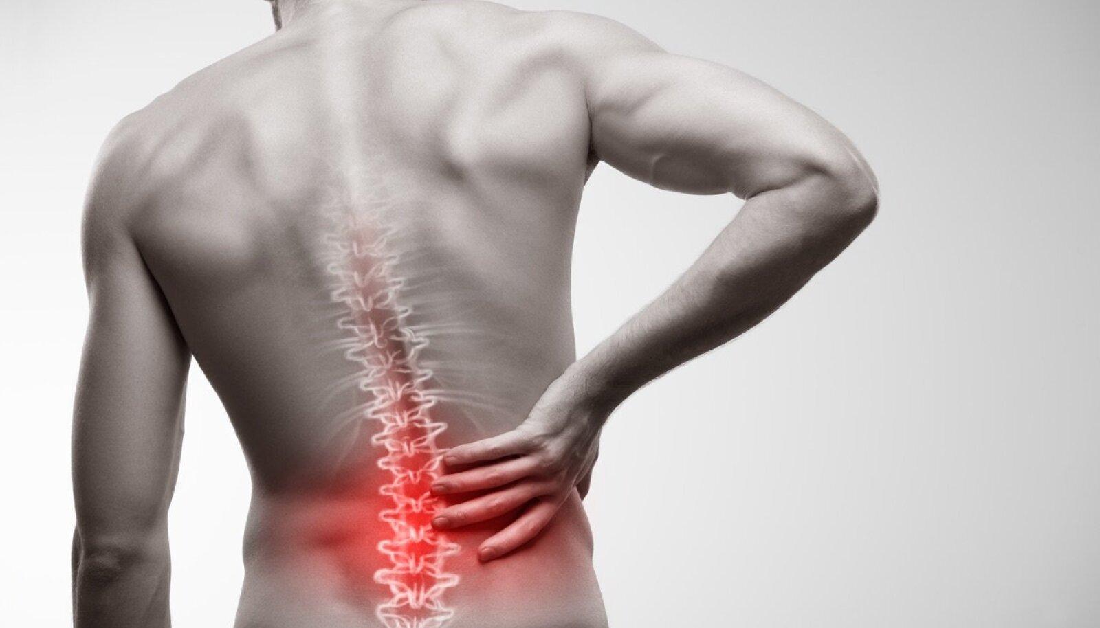 murgitatud valu liigestes Osteokondroosi kaelaravi salv
