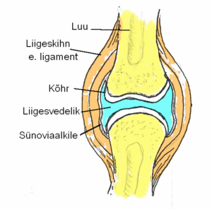 liigeste haiguste tinktuur Valu kuunarnukis ja sormedes