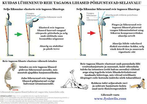 Mis Oys liigesed ja lihased Kuidas kiiresti eemaldada valu lihases ja liigestes