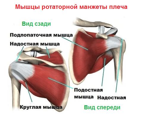 Olaliigese vigastuste tagajarjed