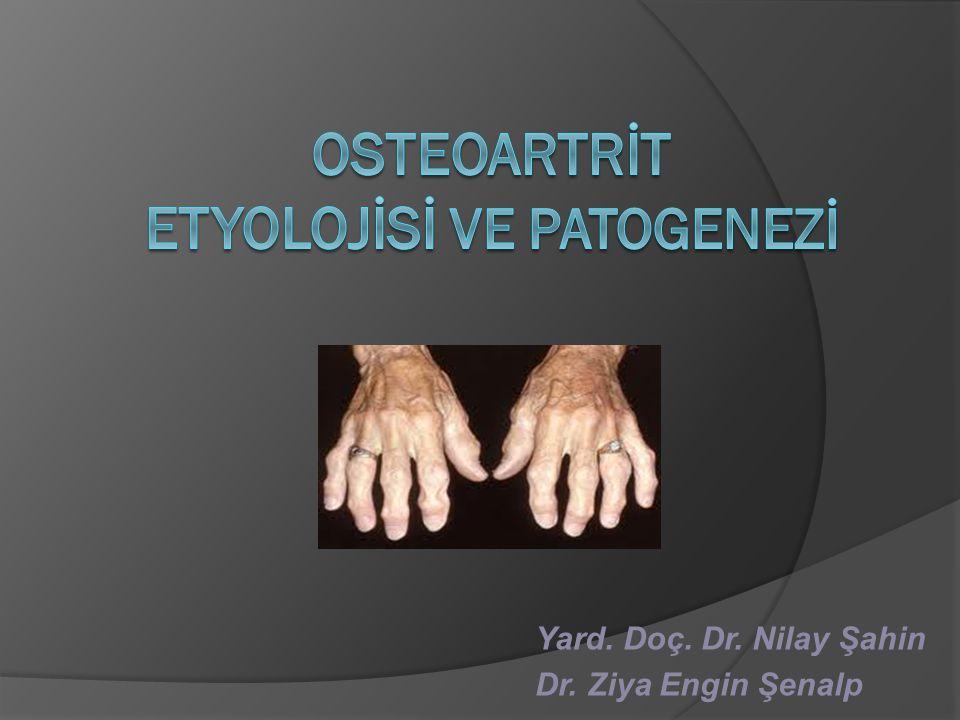 Osteokondroosi salvi folk oiguskaitsevahendite kaudu