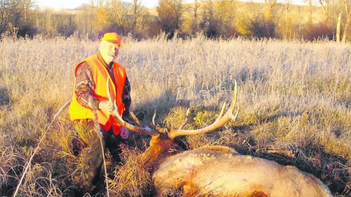 Sustav salv Elk