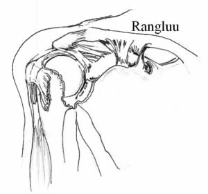 Valu tugevdamine liigeste Vigastused ja kuunarliidete ravi